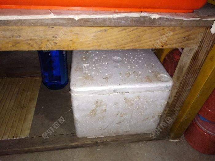 把蚯蚓箱存放在不见光亮的地方。