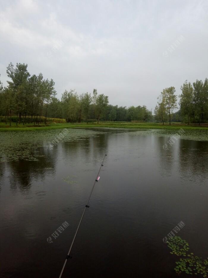 老钓点,有大翘,不怎么开口,期间中一尾鲢鱼,亮片出水,下沉被它接口了,挂了点嘴皮  跑了,雨天,鱼都在浮头,开口时段很短,要把握好才能有鱼获