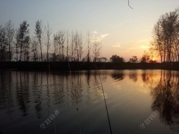 来个黄昏美景,一天3条鱼。现在天气吃口区别之前。早晚凉没什么吃口,中午时分有口,原来傍晚的开口现在一点没有。