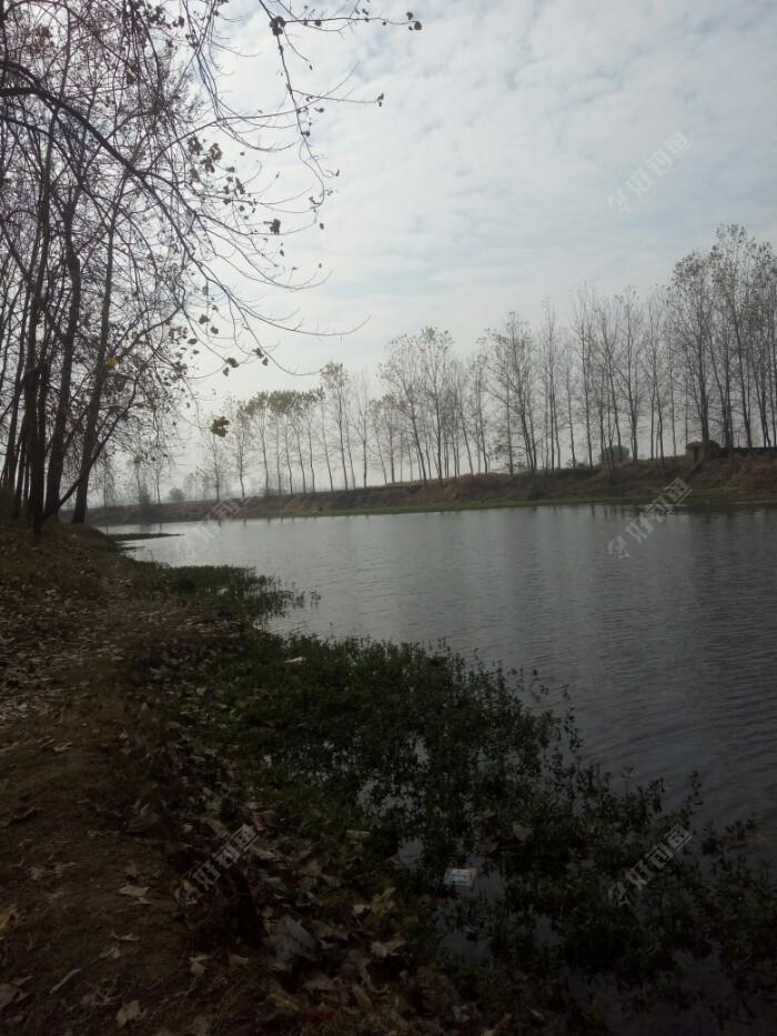 河道左边,坐在拐弯处,唯一失误是坐背阴了,向阳应该好点。