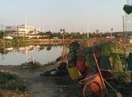 新华钓鱼场