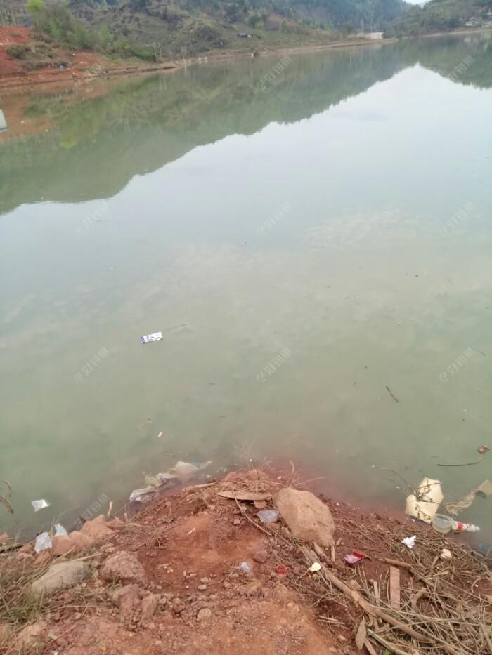 我开始选择的钓位,靠近城边垃圾多,水质不好