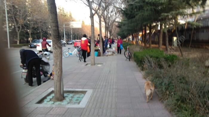 16:00点后,小区前的人行道成为便民市场