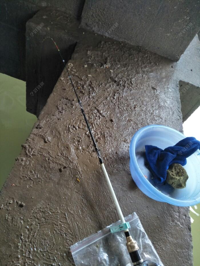 下了雨地上湿了好多泥巴,找个东西垫住再放竿,图片后来拍的,没口我又开了份草鱼料,还剩下点老三样毛巾盖住了