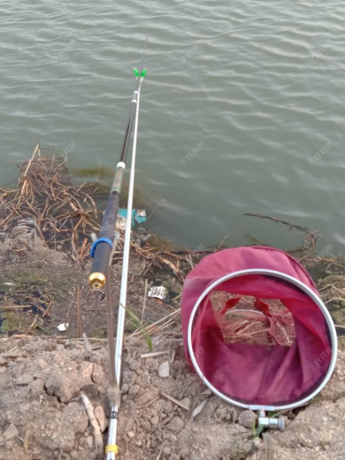 钓位图,今天带的鱼护,因为天热了,放在桶里鱼儿容易死,这是个1.5米鱼护,刚刚够到水