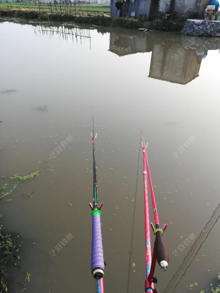 调好漂后拉饵抽了几竿后开始等待鱼儿光顾