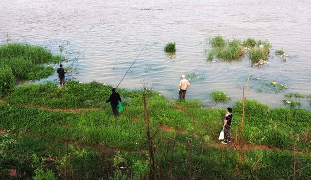 釣魚人遇上這些湊熱鬧的也是有苦難言