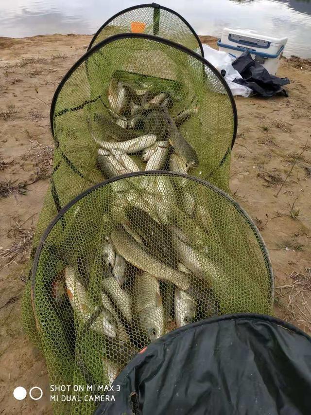為何新手釣魚總是上大物?這幾項素質老手沒有