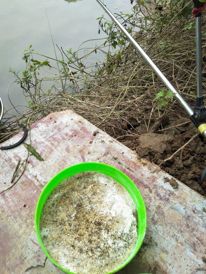 旁边还有钓友留下的蚊香。老钓位看来有钓友经常夜钓呀!那就证明这里还是有鱼可钓吗?