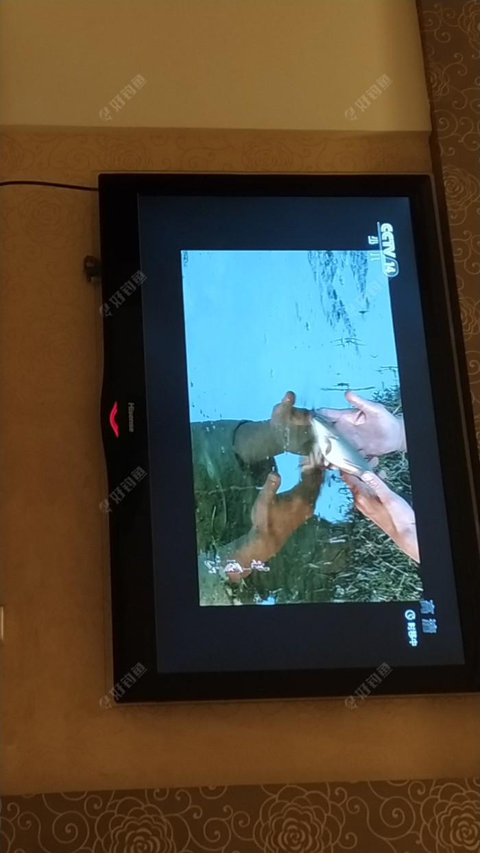 晚上观看电视剧《井冈山》,毛委员被选掉前委书记,无官一身轻,于是来到小河边钓鱼。最后钓上一尾鲤鱼并放流。