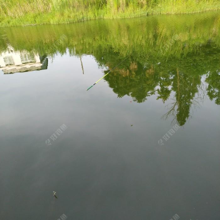 眼看被鱼拖走,我却无计可施。好在旁边来了一位钓友,于是借他的钓竿捞我的钓竿。三米六的钓竿却够不着。于是我又加了4.5米的主线,加大铅坠,试了n次,始终打不到。