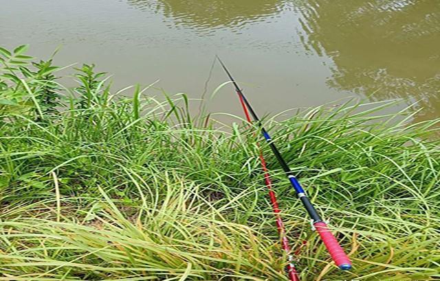 夏季野钓掌握这些狠招,避杂鱼钓大鱼