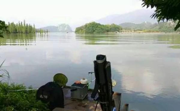 三伏天釣魚,釣位的選擇方法