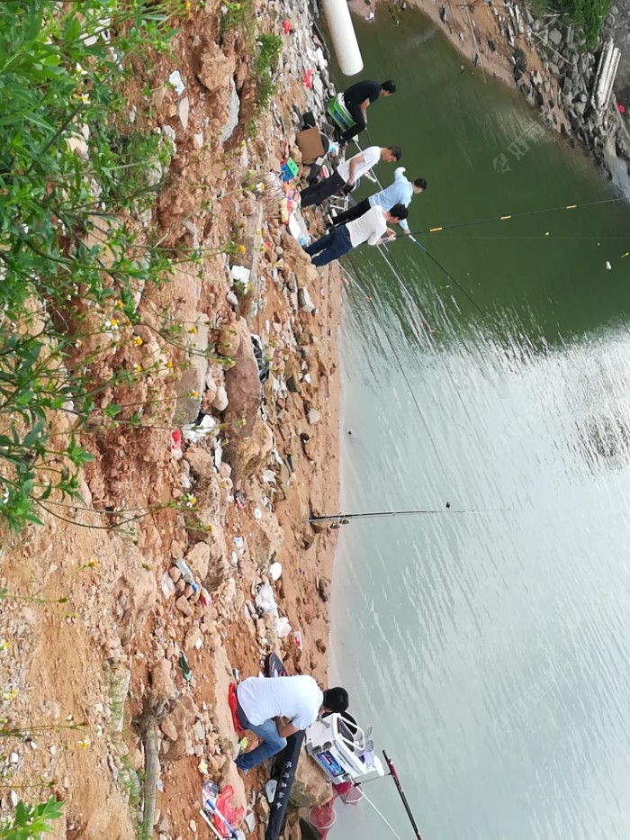 龙溪大桥上游800米,青山绿水,