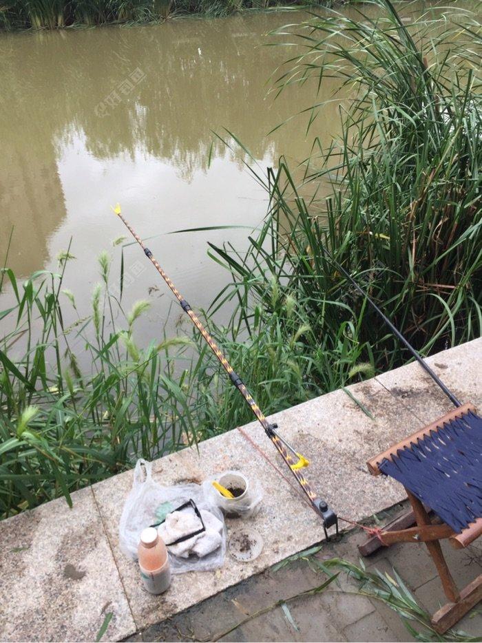 我的钓点,五米四的鱼杆。