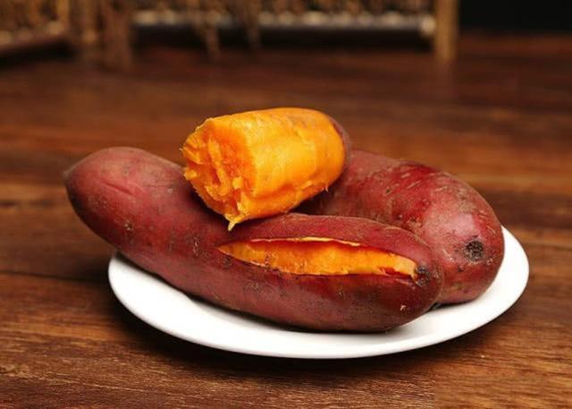 如何用红薯制作钓鱼饵料?特别适合秋天野钓鲤鱼