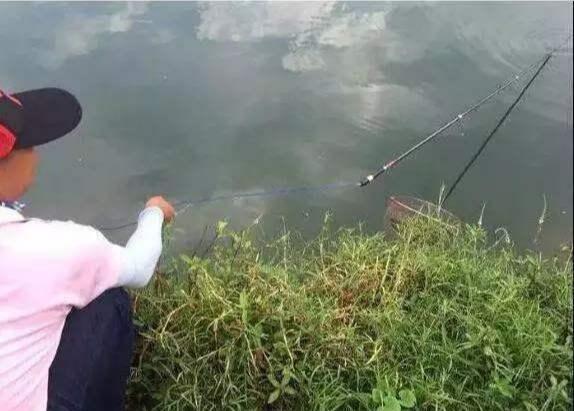 晚秋野钓多大鱼,巧用失手绳的技巧,大鱼再也不脱钩