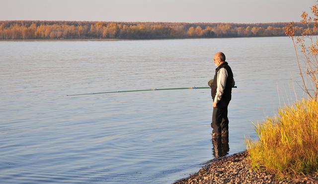 早中晚秋钓鱼好时辰大总结,或许明天就能爆个护