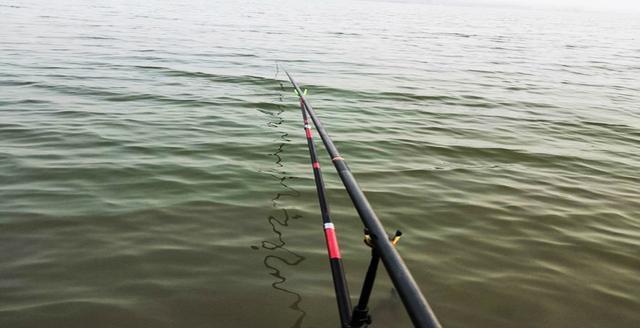 钓鱼老司机分享野钓鲫鱼经验,喜欢钓鲫鱼的你
