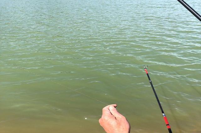 秋末要想钓好鲫鱼,建议你看看这篇文章,助提升渔获