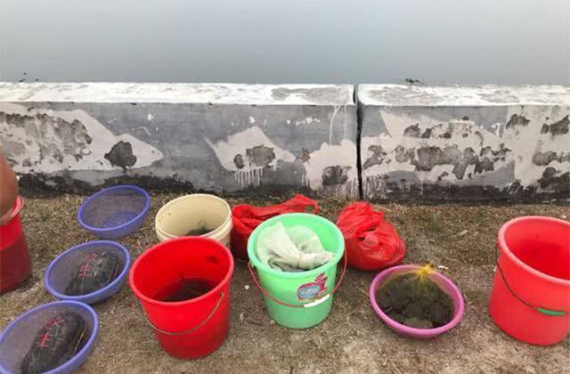 钓鱼人为什么不把鱼全部放生,还能心安理得?