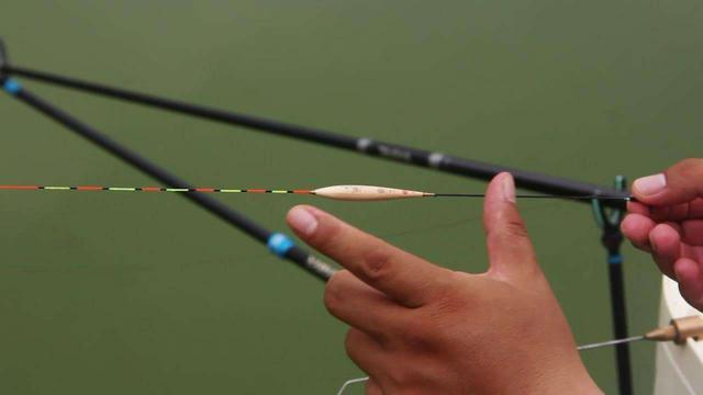 冬天钓鱼选漂攻略,出口清晰且上鱼率高