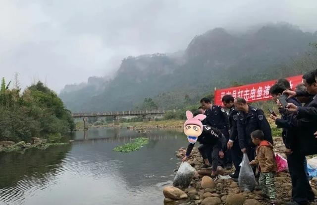 福音:湖南反电组织开始行动了,违者罚5万