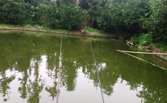 钓鱼用好这些新思路,渔获一准比别人多