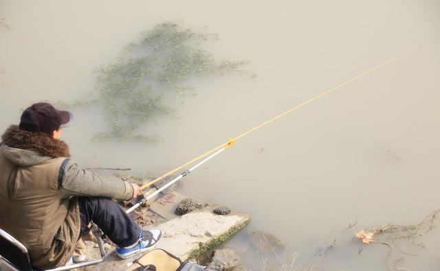 初春认准这几个地方,钓获差不了,大部分水域都有