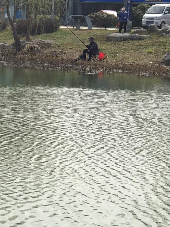 老钓场可以钓鱼了。