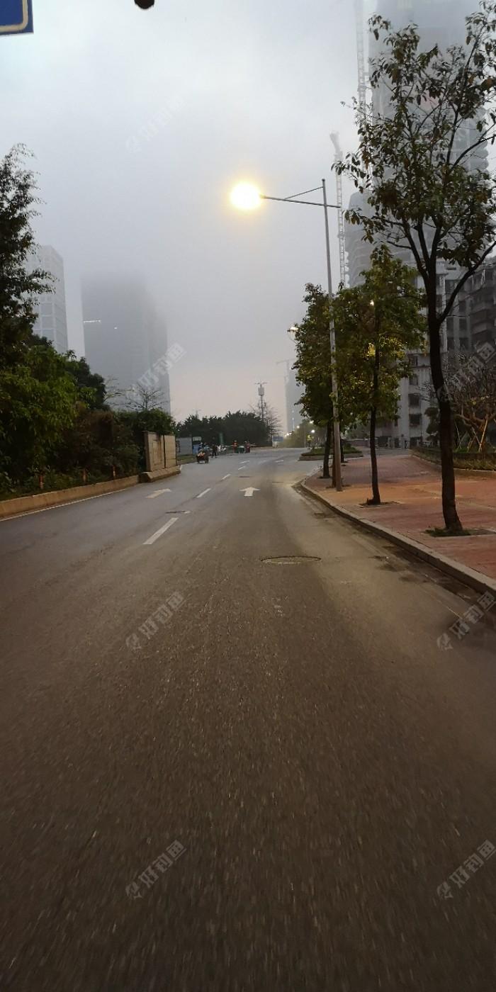 我今天走的早了点,六点钟从家出发了,一路上静悄悄,没有车来车往,更没有行人在走,这一路我骑着电瓶车,开足了马力,奔向会展公园旁边的小河沟,所以很快地来到了小河。