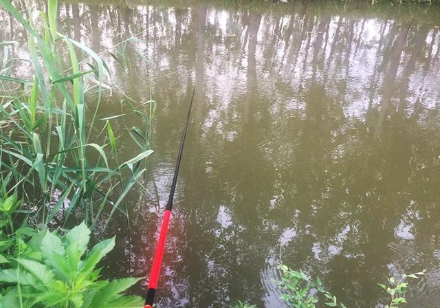无论新手还是老手,钓鱼时都会遇到这些事