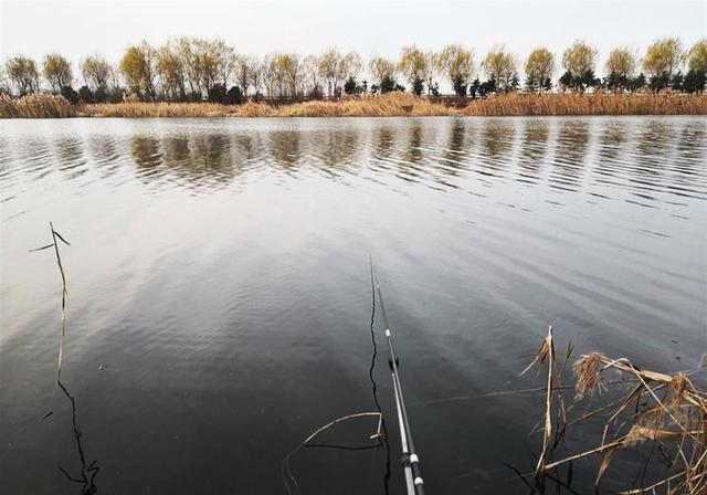 春季想要釣好魚,掌握這幾種釣法,爆護不是事