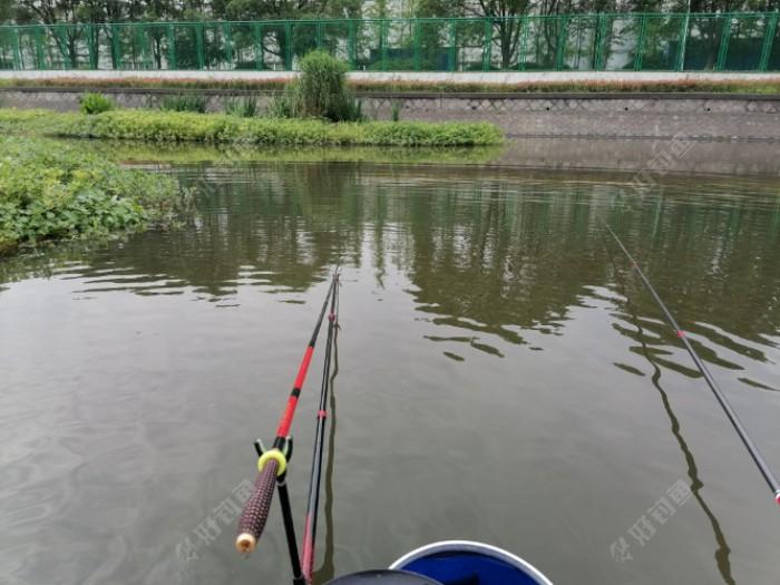 开张了!白条一尾,可惜我刚拿出手机,它就跌落在我的鱼护里,真是尾有上进心的白条。 好鱼啊!省去了我取钩子的漫长过程。 好吧,我承认我是个不合格的钓友,钓鱼中写帖