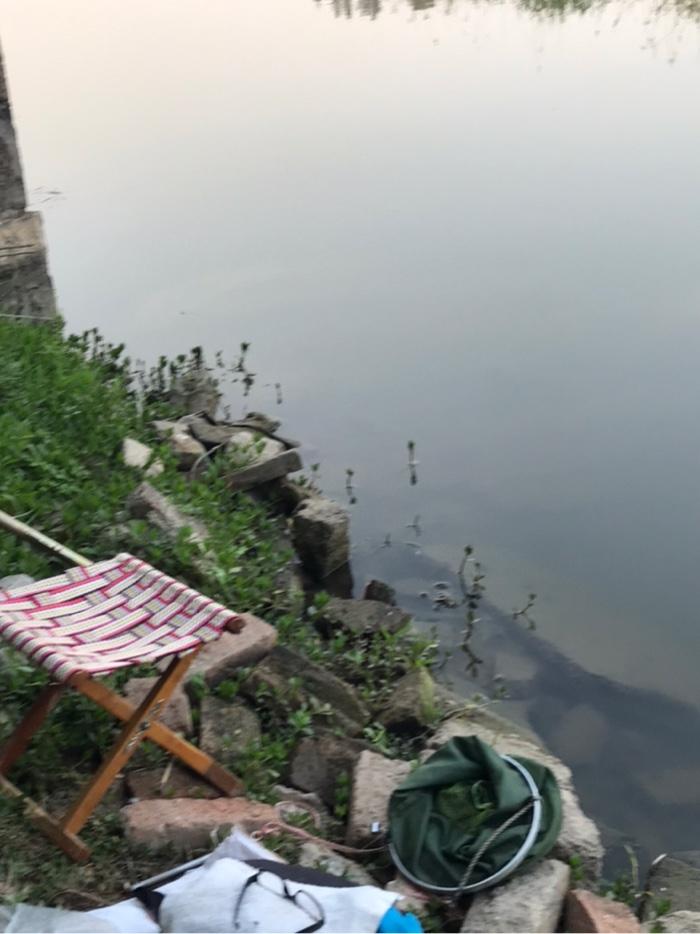 我的钓位,一个多小时了,鱼护网还放在岸上,没有入水。