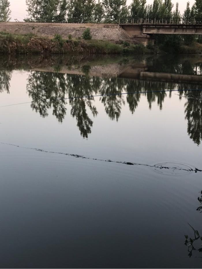 静静的水面,没有一点动静。
