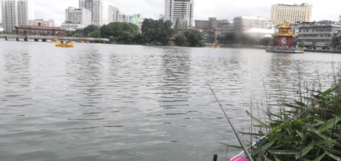 去年八一公园彻底抽干清底,老爸和朋友半夜还去捞鱼,弄到半夜三四点
