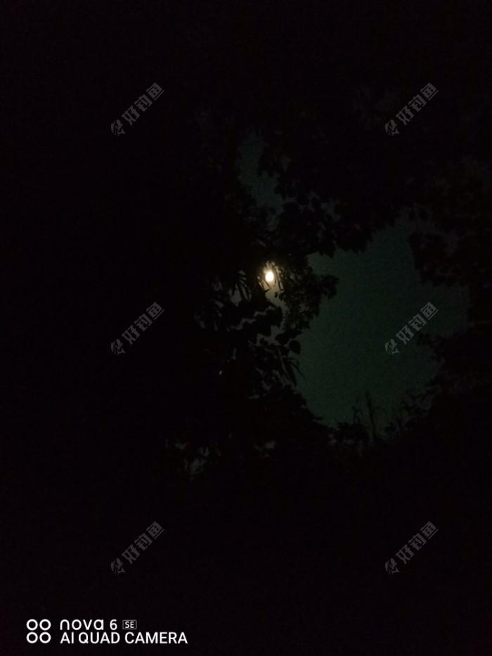 昨晚回来,当然是为了夜钓了,刚开始还是有点口,三指飞,二两赤眼,但旁边的啊公电筒晃来晃去,有点心烦,后面钓位外面十米网箱上有人来钓,灯火通明,收杆