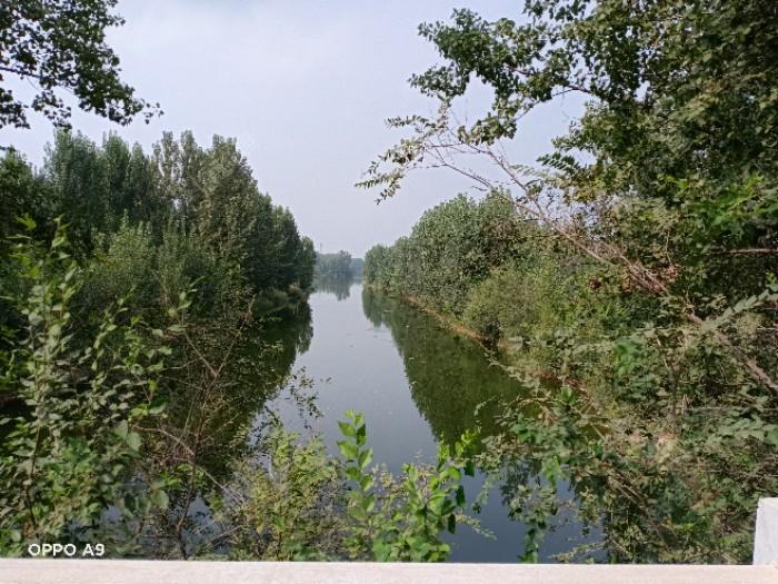 河面宽百米左右,南北流向