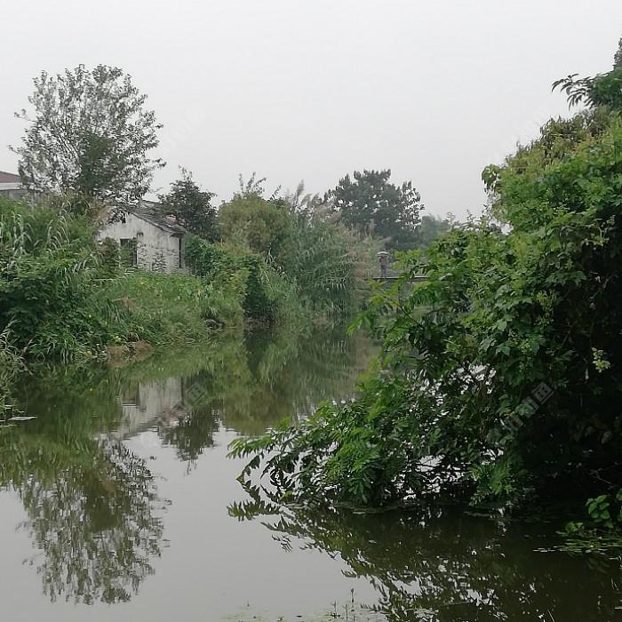 远处小桥上老头口不怎么好,这段河数数有十几位钓友