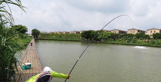 台湾的捕鱼业已经被越来越多的渔民抛弃,痛苦是无可奈何的