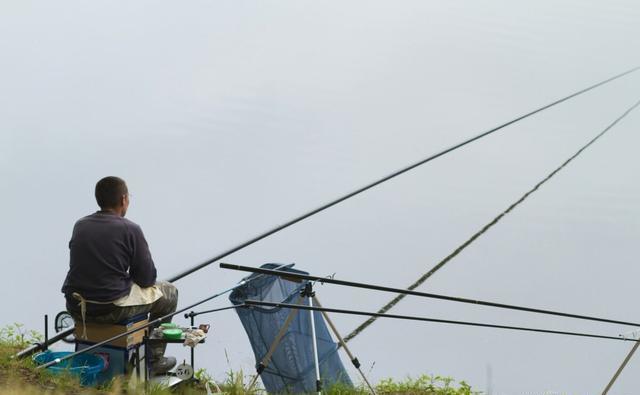记住这三点,学会冬季选择鱼竿长度,鱼获多多