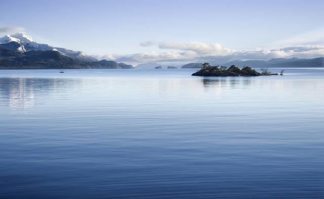 维多利亚湖的哭泣,隆背金刚把200多种鱼类,吃灭绝了