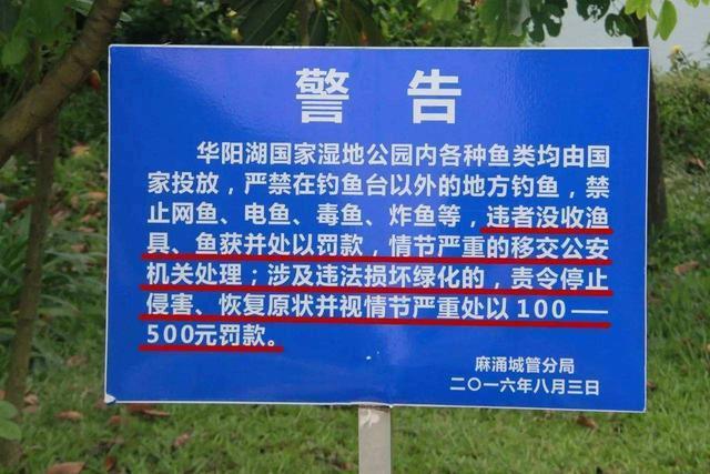 农业部又对这部分钓鱼人出手,详细法规解读