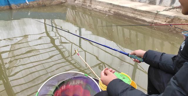 无论使用多粗的子线都无法拿鱼上岸,无奈换用钢丝才钓上来一条