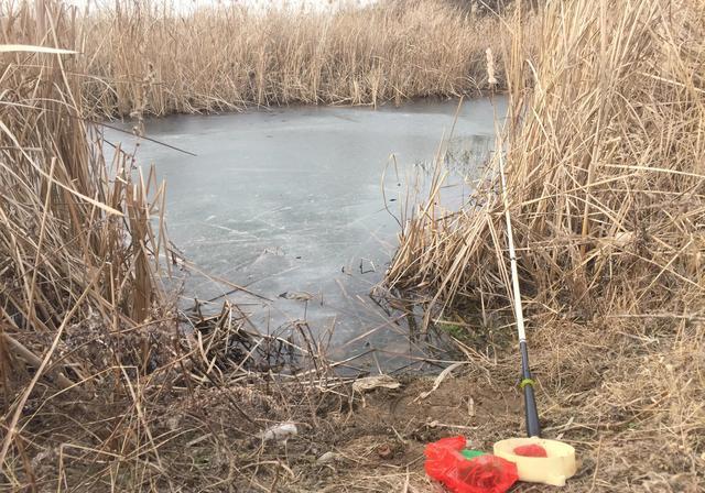 立春之后钓鱼应该钓深还是钓浅,为什么阴天反倒比晴天上鱼效果好(图7)