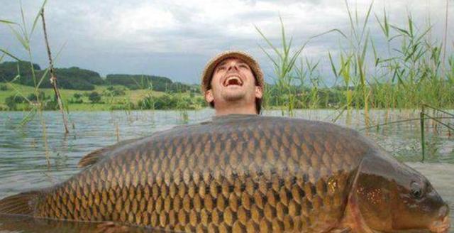 在被中国鲤鱼肆虐的外国河流钓鱼,会是啥景象