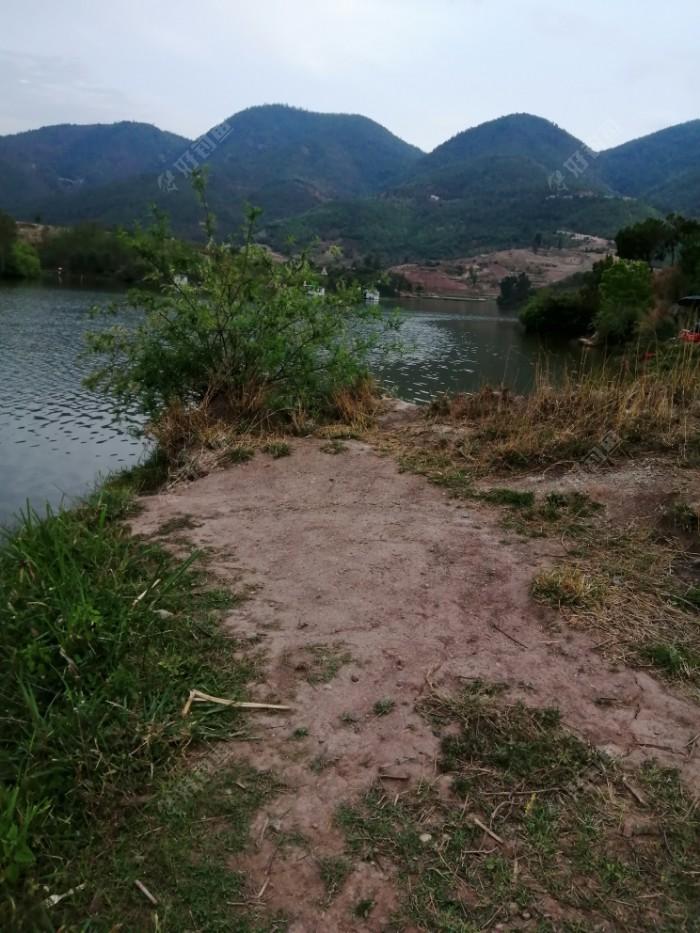 右边位置,旁边小湾子口,有两个四川钓友垂钓,白加黑,连续作战,目前还没上鱼。打老玉米窝,爆炸钩、长竿都上了,阵势不小。