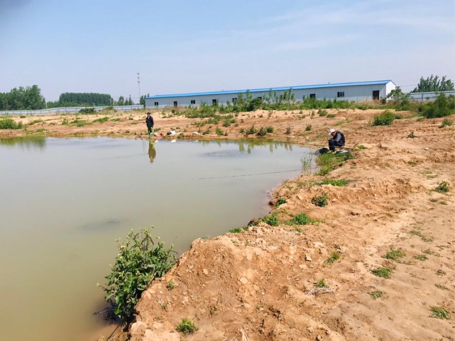 老李今天在北边钓鱼,拐弯处是一位附近的老者,家住在附近农村,他讲昨天他在此钓了十几条鱼 。