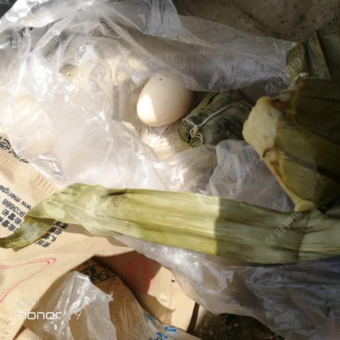 撒网过后到十二点半一口没有,,,吃饭,带粽子和鸡蛋对付一下!